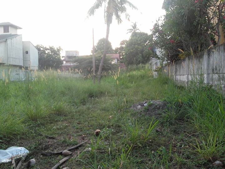 land for sale off templers road mount lavinia