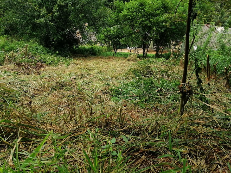 12.5p Land For Sale In Kandy Aniwatta